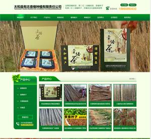 太和县有志香椿种植有限责任公司米乐体育在线建设案例